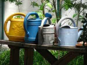 1461364700097_Watering-garden