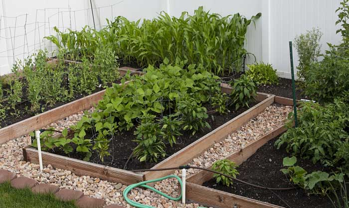 How to Make a Square Foot Organic Garden