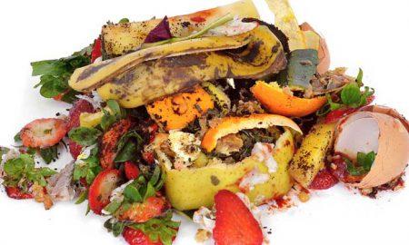 Composting Food Scraps at Home