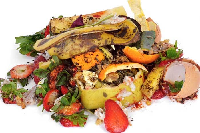 Composting Food Scraps at Home