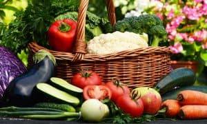 Tips for Organic Home Gardeners